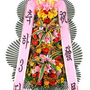 축하3단-중
