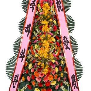 축하4단/특품