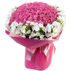핑크장미 & 후록스 꽃다발